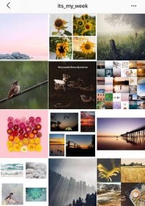 instagram blog feed