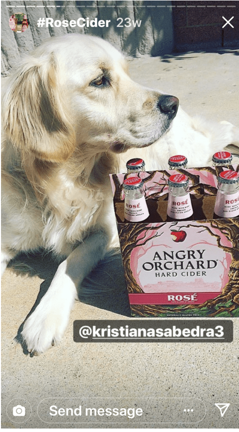 Instagram Story by Angry Orchard of Dog and Cider