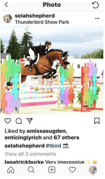 Instagram post of jumping horse