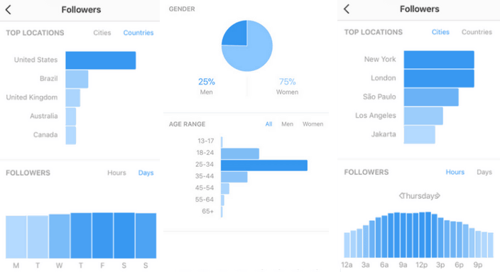 Snapshot of data from Instagram Insights
