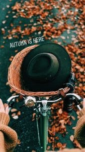 Autumn Bike Instagram Fonts