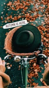 Autumn Bike Instagram Modern Font