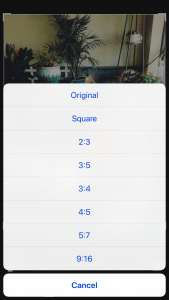 Screenshot of iPhone Crop Ratios