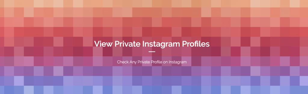 Should You Use A Private Instagram Viewer? - Upleap