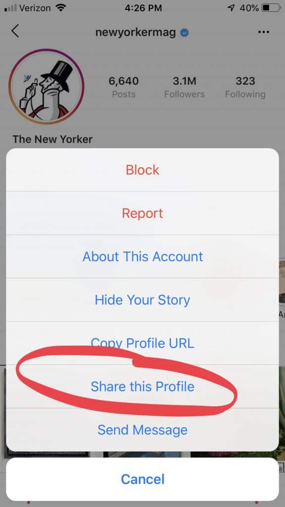 Share profile through Instagram direct